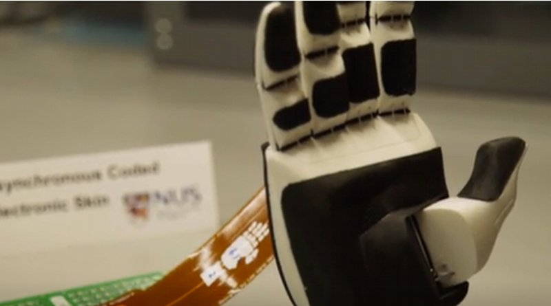 NUS researchers have developed an ultra responsive and robust artificial nervous system for e-skins. Credit: Screenshot from National University of Singapore video