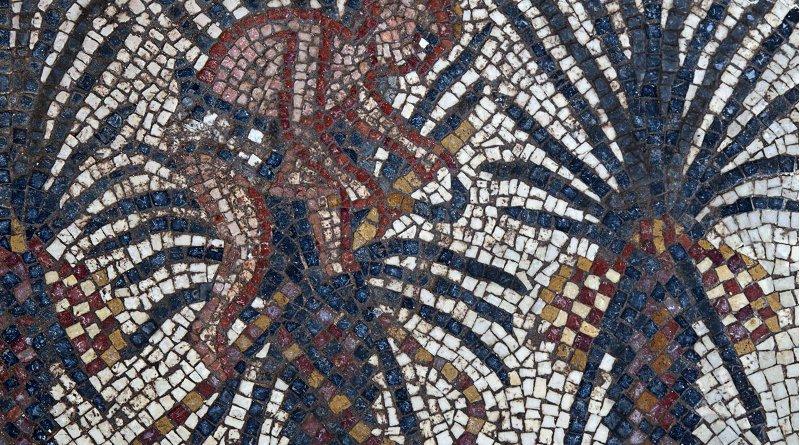 Elim mosaic detail, Huqoq Excavation Project. Copyright Jim Haberman. All rights reserved. Courtesy: UNC-Chapel Hill. Credit Copyright Jim Haberman