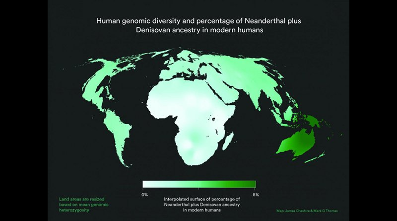 World map with land area resized to represent modern human genetic diversity and colour representing Neanderthal plus Denisovan ancestry. As can be seen, contributions from other populations to the Homo sapiens gene pool are small and unevenly distributed. Africa is disproportionately large because the great human genetic diversity - and hence the roots of humanity - are found here. Credit James Cheshire/Mark G. Thomas