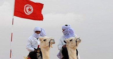 bedoiun camel desert flag tunisia