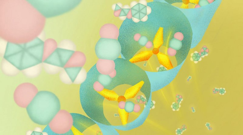 This new porous coordination polymer has propeller-shaped molecular structures that enables selectively capturing CO2, and efficiently convert the CO2 into useful carbon materials. Credit Illustration by Mindy Takamiya