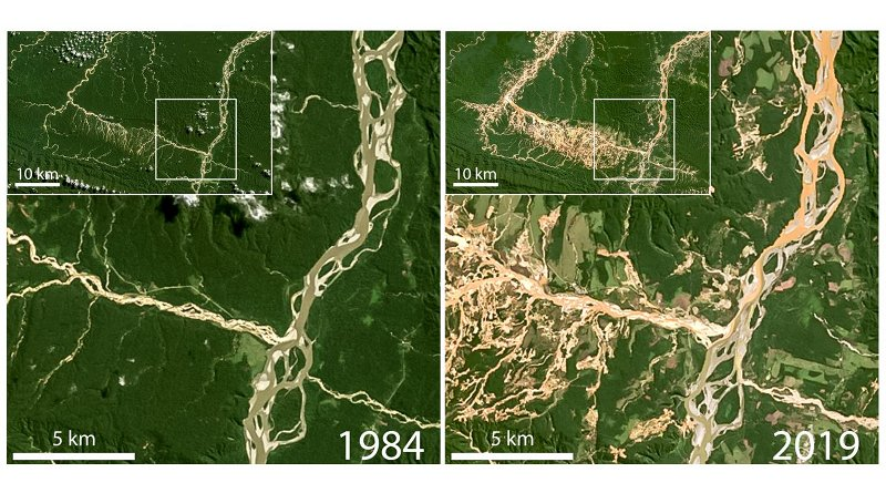 Satellite images used in the study show deforestation and elevated suspended sediment (orange/brown water) due to gold mining operations in the Rio Inambari and Rio Colorado watersheds in Peru. Credit Images are from NASA LandSat. Figure compiled by Evan N. Dethier.