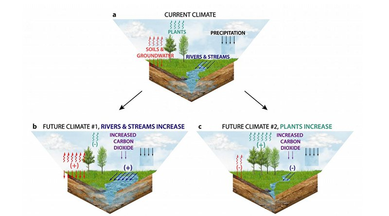 Allocation of water in the current climate and two future climates with high carbon dioxide. Future climate 1: where plant stomata close in response to high carbon dioxide, increasing water in rivers and soils, making the land wetter. Future climate 2: where longer- and warmer-growing seasons and additional plant growth decrease water in rivers and soils, making the land drier. CREDIT Figure provided by Justin S. Mankin.