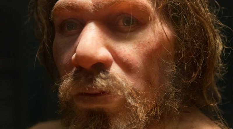 Small populations, inbreeding, and random demographic fluctuations could have been enough to cause Neanderthal extinction, according to a study published in the open-access journal PLOS ONE by Krist Vaesen from Eindhoven University of Technology, the Netherlands, and colleagues. CREDIT: Petr Kratochvil (CC0)