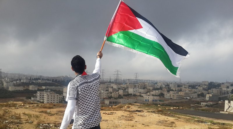 Young man with Palestine flag. Photo by Ahmed Abu Hameeda on Unsplash