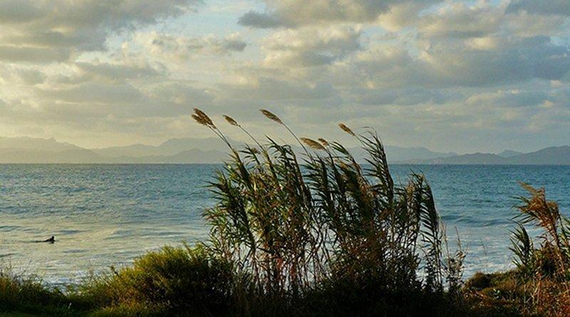 Coast Sea Rocky Coast Surf Beach Mediterranean