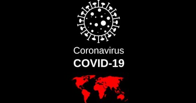 Virus Coronavirus Sars-Cov-2 Flash Corona-Virus