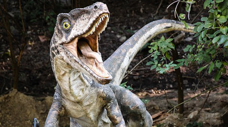 Dinosaur Velociraptor Dinopark Lizard