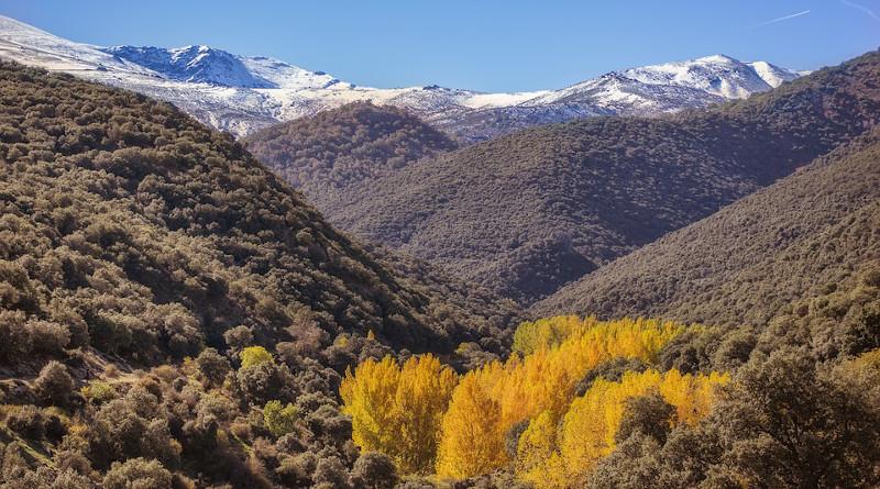 sierra nevada granada spain mountains Autumn Landscape Trees Leaves Forest Lugros