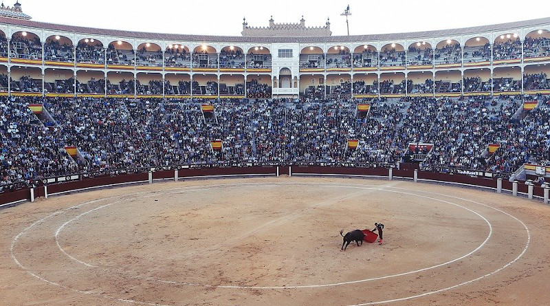 Bullfight Torero Corrida Arena Fight Matador Las Ventas Spain Madrid