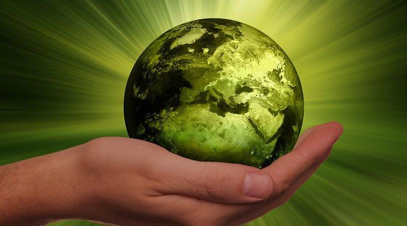 Sustainability Energy Globe Renewable Earth World