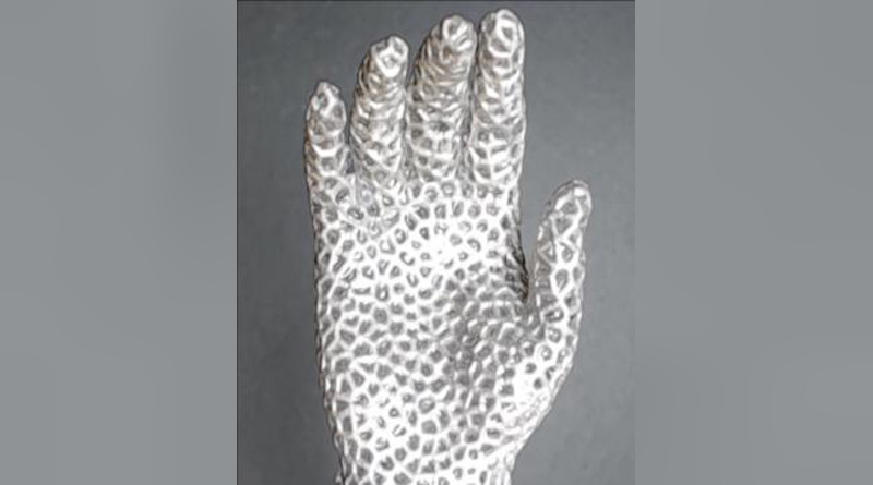A hand that slowly opens as the metal lattice melts. CREDIT Pu Zhang
