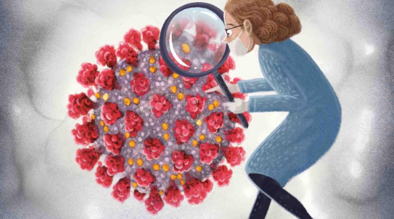 A new tool is helping scientists better understand COVID-19. Illustration by Marcin Minor. CREDIT: Marcin Minor