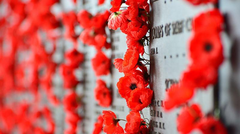 Australia War Memorial Canberra Poppies Memorial War