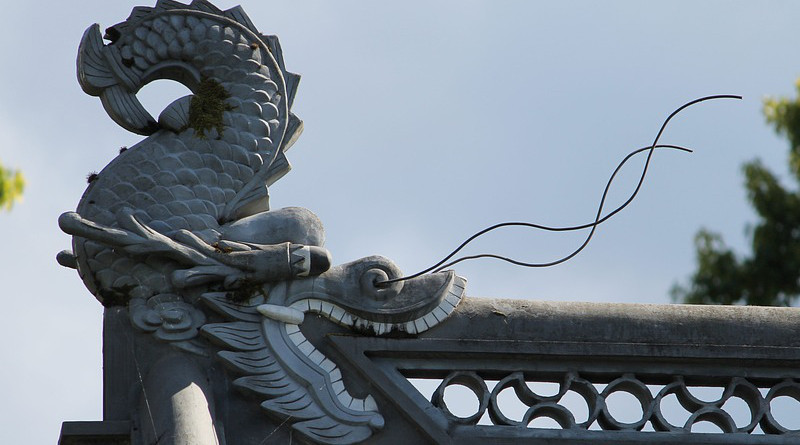 Chinese Dragon Chinese Dragon Oriental China Asia