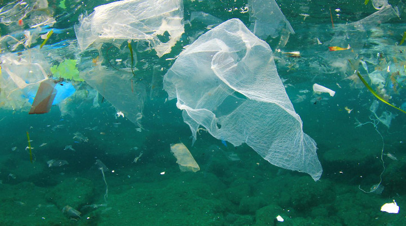 New research from NUI Galway and the University of Limerick has for the first time quantified the volume of plastic from European countries (EU, UK, Switzerland and Norway) that contributes to ocean littering from exported recycling. CREDIT: Shutterstock/NUI Galway