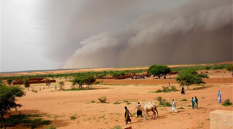 Intense dust storms, such as this haboob in Mali in August 2006, proceed torrential rain CREDIT: Françoise GUICHARD / Laurent KERGOAT / CNRS Photo Library