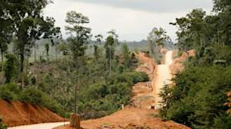 Deforestation to plant oil palms on a heavily weathered soil in the tropics. CREDIT: Oliver van Straaten