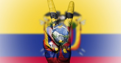 Flag Ecuador Peace Hand Nation Background Banner