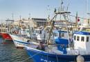 Fishing Boats Spain Harbor Port Blue Mediterranean