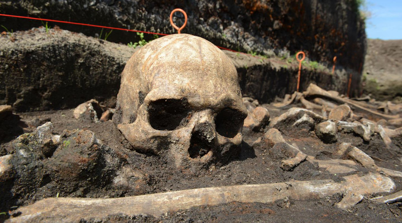 Bronze Age skull in situ in the Tollense valley. CREDIT: photo/©: Stefan Sauer/Tollense Valley Project