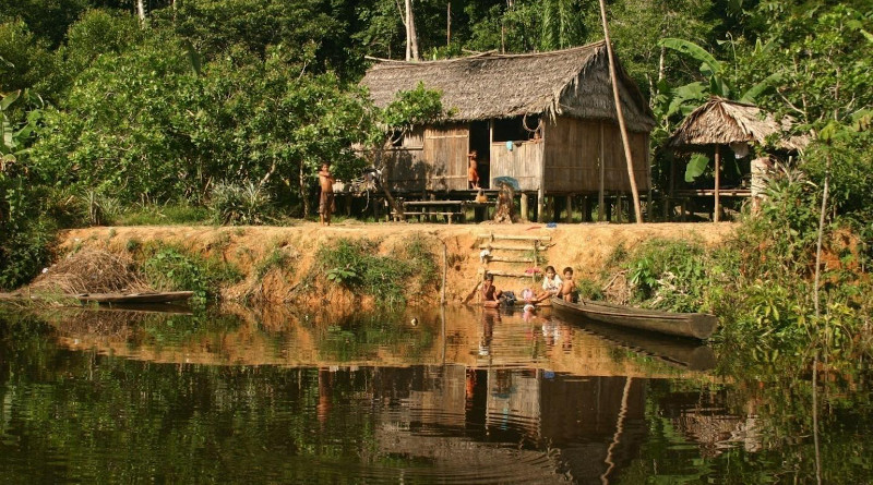 This photograph, taken in the Médio Juruá region of Amazonas State, Brazil. shows the houses of forest-proximate people living in sustainable development reserves in Amazonia. CREDIT: Peter Newton, University of Colorado Boulder