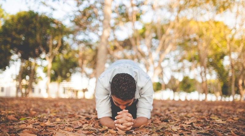 Pray Leaf Fall Autumn Trees Plants Nature People Man