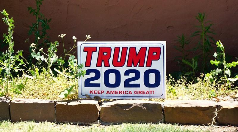 Politics Trump 2020 President Usa Election Vote