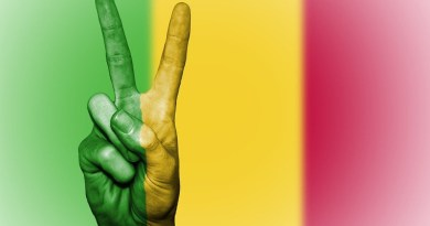 mali flag peace