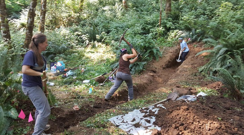 Trenching begins on the Gales Creek Fault in Oregon. CREDIT: Alison Horst