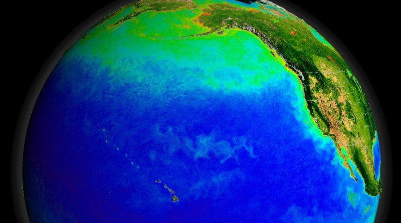 The Pacific Ocean's currents support a diverse ecosystem, seen here from space with green indicating blooms of photosynthesizing plankton. Warmer currents during the ice age may also have supported early human settlements. CREDIT NASA/Goddard Space Flight Center, The SeaWiFS Project and GeoEye, Scientific Visualization Studio