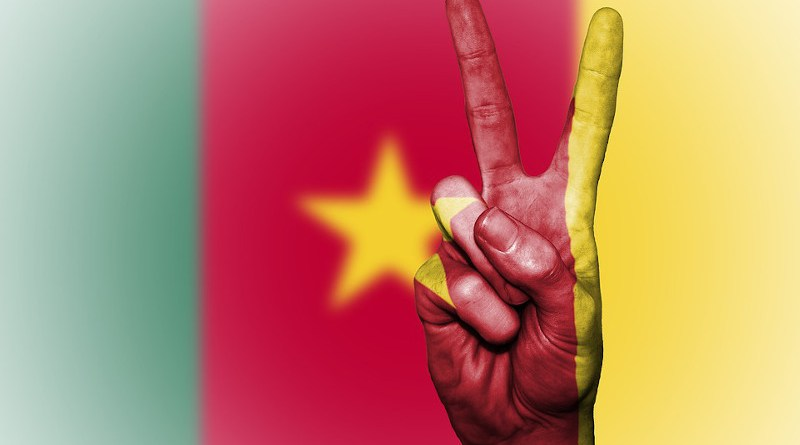Cameroon Flag Peace National Country Cameroonian