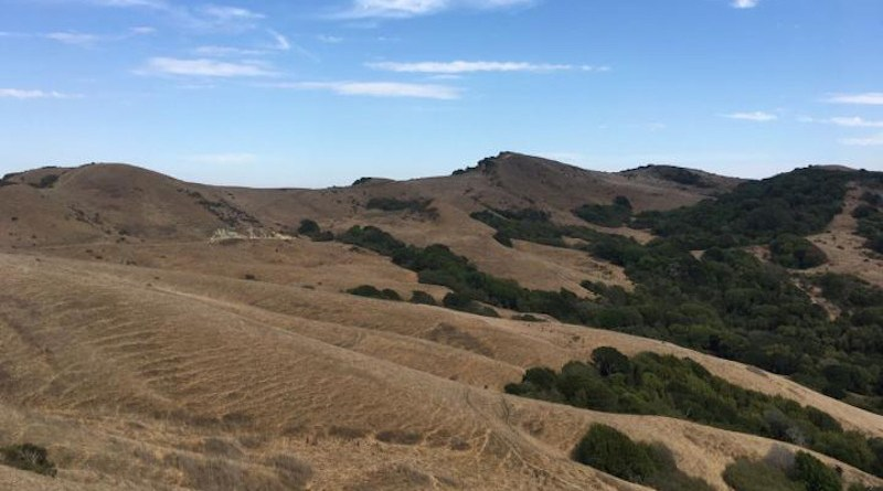 A dryland ecosystem in Northern California shows decreasing soil moisture but little changes in surface water availability. CREDIT Columbia Engineering