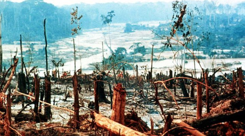 Amazon deforestation CREDIT Oregon State University