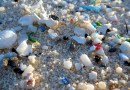 Microplastics on a beach. CREDIT NOAA