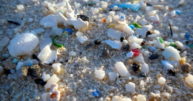 Microplastics on a beach. CREDIT NOAA