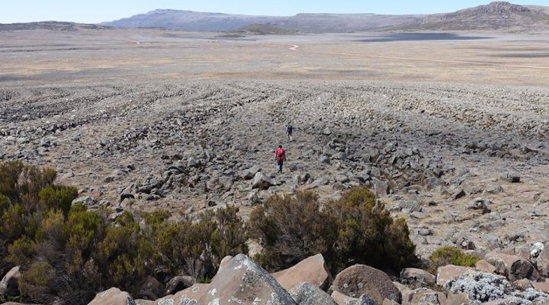 The up to 200 m long, 15 m wide and 2 m deep sorted stone strips on the southern Sanetti Plateau (ca. 3,900 m a.s.l.) were probably formed during the last glacial period under much cooler conditions and can best be explained by a natural sorting of the stones in the course of the cyclic freezing and thawing of the ground. CREDIT Heinz Veit