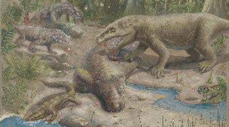 """The plant-eating pareiasaurs were preyed on by sabre-toothed gorgonopsians. Both groups died out during the end-Permian mass extinction, or """"The Great Dying."""" CREDIT © Xiaochong Guo"""