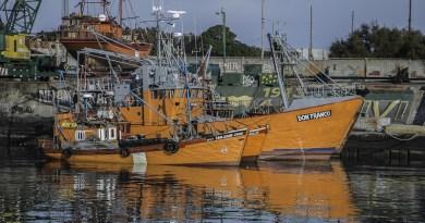 Fishing Mar Del Plata Sea Boat Water Calm Port