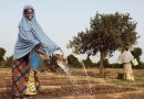 Women watering a field in Africa. Photo credit: United Nations