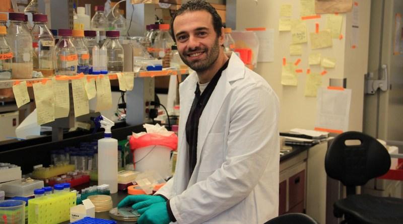 The team's findings were led by postdoctoral fellow, Wael Elhenawy, McMaster University CREDIT McMaster University
