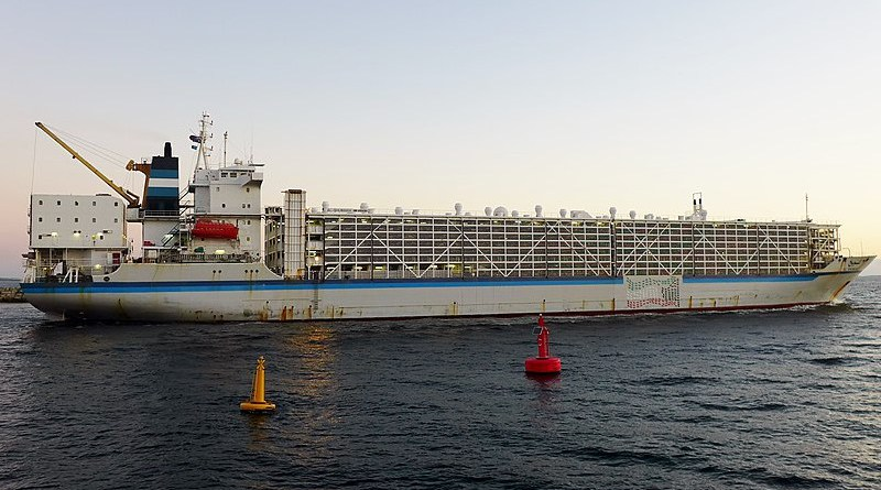 Example of a livestock carrier. Photo Credit: Bahnfren, Wikipedia Commons