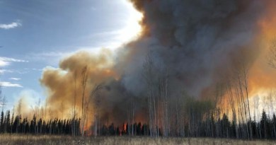 An experimental peatland fire in Alberta, Canada. CREDIT Sophie Wilkinson, McMaster University