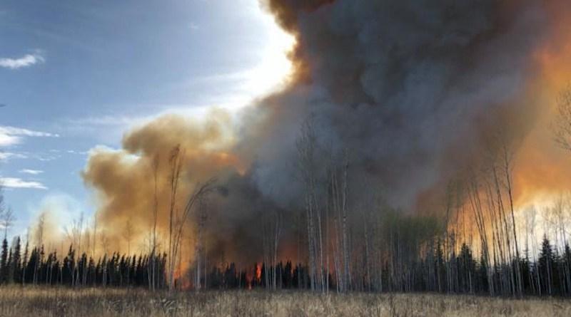 An experimental peatland fire in Alberta, Canada. CREDIT Sophie Wilkinson, McMaster University