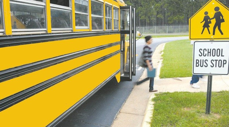 Schoolbus Vehicle Bus Girl School Grass Spring