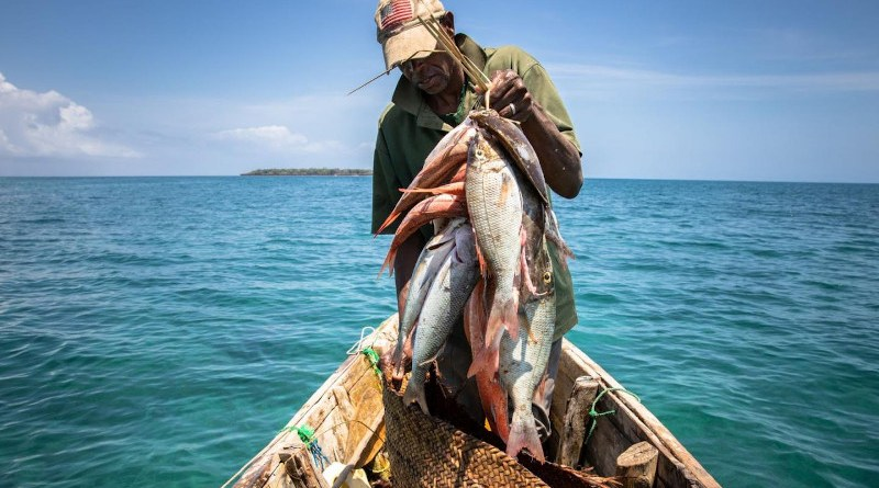 No-take marine protected areas (MPAs) increased the growth of fish populations by 42 percent when fishing was unsustainable in surrounding areas. CREDIT © Erika Piñeros, for WCS