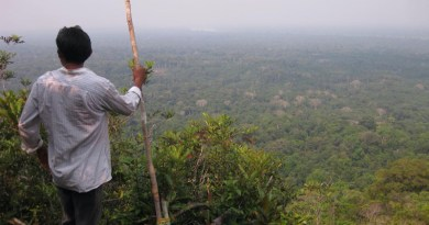 A Yucuna man overlooking Indigenous Lands in the Amazonian rainforest, where many languages are predicted to go extinct by the end of the 21st century. CREDIT (Image: UZH / Rodrigo Cámara-Leret)