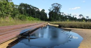 Oil spill from San Jacinto facility, Doce de Octubre indigenous community in the Tigre river basin, Loreto, Peru. CREDIT (Photo: Jean Pierre, OPIKAFPE)