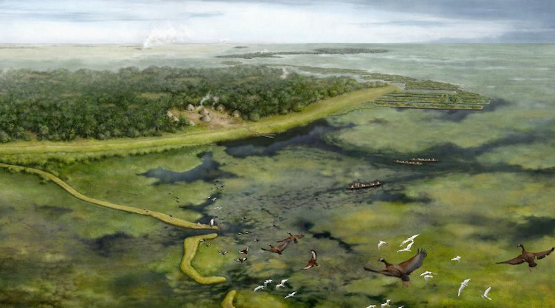 As part of this study, the researchers commissioned an illustration by artist Kathryn Killackey. The illustration is a representation of the pre-Columbian landscape around 3,500 years ago, based on their reconstruction, and details what they believe the region would have looked like at the time. CREDIT Kathryn Killackey
