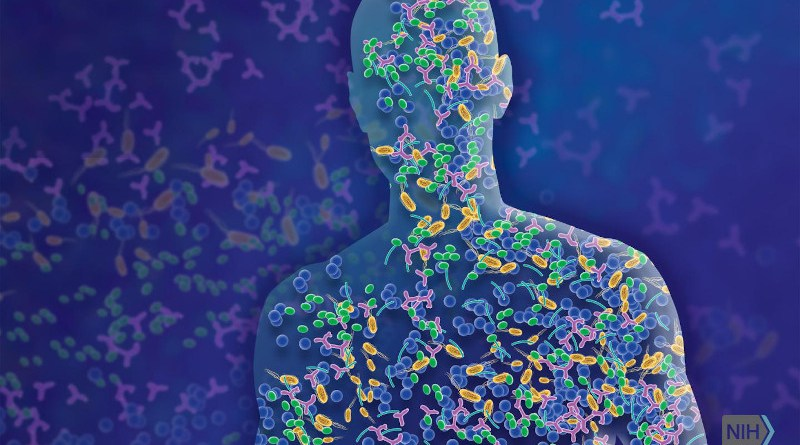 The microbiome is comprised of microorganisms that live in and on us and contribute to human health and disease. CREDIT NHGRI